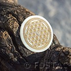 Flower of Life Nacre